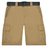 Clothing Men Shorts / Bermudas Columbia SILVER RIDGE II CARGO SHORT Beige