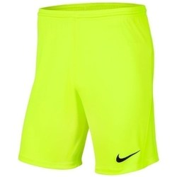 Clothing Boy Shorts / Bermudas Nike JR Park Iii Knit Celadon