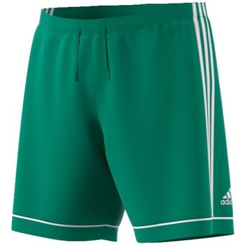 Clothing Men Shorts / Bermudas adidas Originals Squadra 17 Green