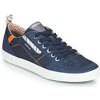 Shoes Low top trainers Geox JR KILWI GARÇON Blue