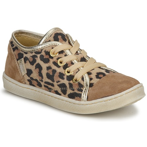 Shoes Girl Low top trainers Pinocchio  Brown