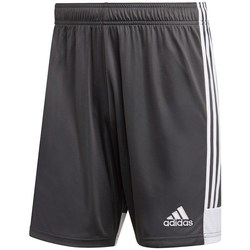 Clothing Men Shorts / Bermudas adidas Originals Tastigo 19 Grey