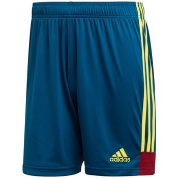 Clothing Men Shorts / Bermudas adidas Originals Tastigo 19 Blue