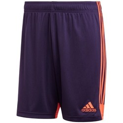 Clothing Men Shorts / Bermudas adidas Originals Tastigo 19 Violet