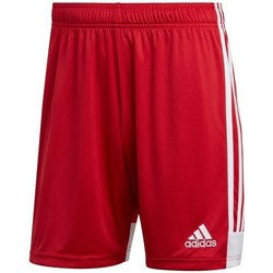 Clothing Men Shorts / Bermudas adidas Originals Tastigo 19 Red