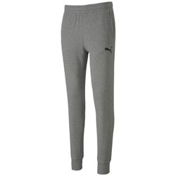 Clothing Men Tracksuit bottoms Puma Teamgoal 23 Grey