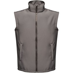 Clothing Men Jackets / Cardigans Professional ABLAZE Printable Bodywarmer Grey