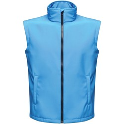 Clothing Men Jackets / Cardigans Professional ABLAZE Printable Bodywarmer Blue