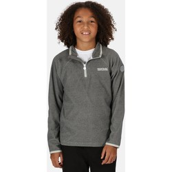 Clothing Children Fleeces Regatta Loco Lightweight Mini Stripe Half Zip Fleece Grey Grey
