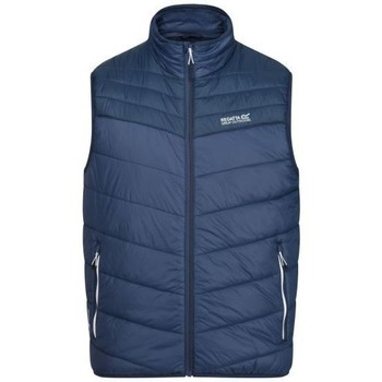 Clothing Men Duffel coats Regatta Men's Freezeway II Insulated Quilted Walking Bodywarmer Blue