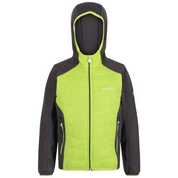 Clothing Children Fleeces Regatta KIELDER HYBRID IV Baffled Jacket Green