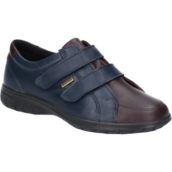 Shoes Women Derby Shoes Cotswold Haythrop Navy and Bordo