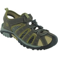 Shoes Men Outdoor sandals Surf Vista Brown