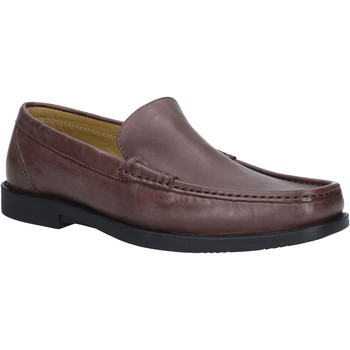 Shoes Men Loafers Steptronics Montana Brown