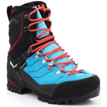 Shoes Women Walking shoes Salewa WS Vultur Evo Gtx Black,Blue