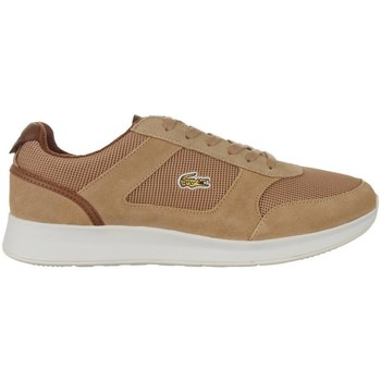 Shoes Men Low top trainers Lacoste Joggeur Brown
