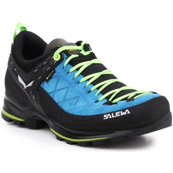Shoes Men Walking shoes Salewa MS Mtn Trainer 2 Gtx Black,Blue