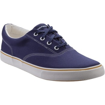 Shoes Men Low top trainers Hush puppies HM02100-410-6 Chandler Navy Canvas