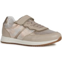 Shoes Girl Low top trainers Geox J926FA-0MABC-C5000-32 J Jensea Girl Beige