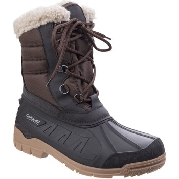 Shoes Women Wellington boots Cotswold F99231SPI Coset Brown