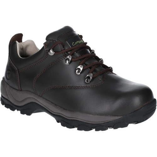 Shoes Walking shoes Cotswold Winstone Low Brown