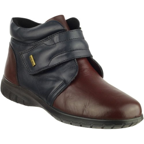 Shoes Women Ankle boots Cotswold Chalford Navy and Bordo