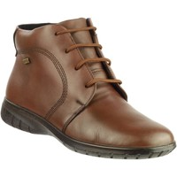 Shoes Women Ankle boots Cotswold Bibury Brown