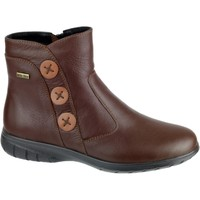 Shoes Women Ankle boots Cotswold Dowdeswell Chocolate