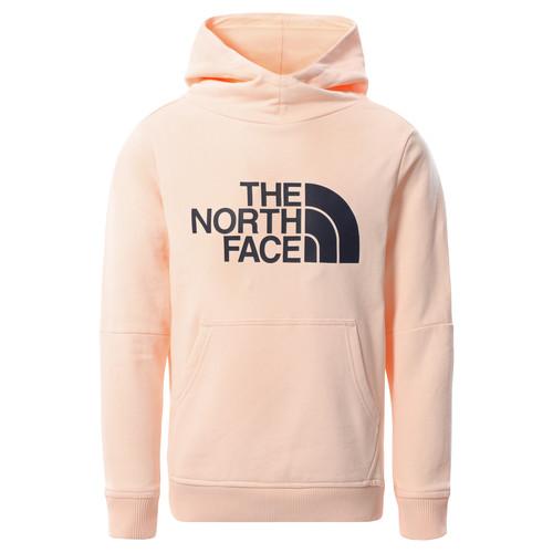Clothing Girl Sweaters The North Face DREW PEAK HOODIE 2.0 Pink