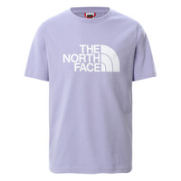 Clothing Girl Short-sleeved t-shirts The North Face EASY BOYFRIEND TEE SWEAT Purple