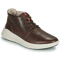 Shoes Men Low top trainers Timberland BRADSTREET ULTRA PT CHK Brown