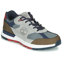 Shoes Men Low top trainers Timberland FIELD TREKKER LOW F/L Grey