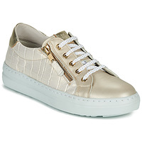 Shoes Women Low top trainers Dorking VIP Gold / Silver