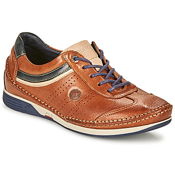 Shoes Men Low top trainers Fluchos TORNADO Brown