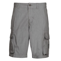 Clothing Men Shorts / Bermudas Napapijri NORI Grey