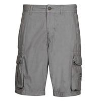 Clothing Men Shorts / Bermudas Napapijri NORI Grey