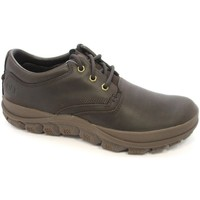 Shoes Men Low top trainers Caterpillar Fused Tri Brown