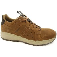 Shoes Men Low top trainers Caterpillar Stratify LO WP Brown