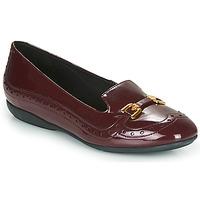 Shoes Women Flat shoes Geox D ANNYTAH Bordeaux