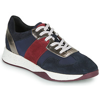 Shoes Women Low top trainers Geox D SUZZIE Blue