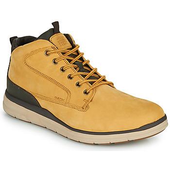 Shoes Men Hi top trainers Geox U HALLSON Brown