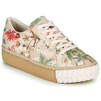 Shoes Women Low top trainers Desigual STREET CAMOFLOWERS Kaki