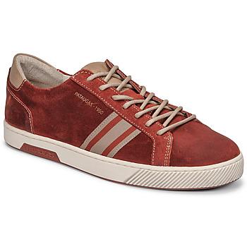 Shoes Men Low top trainers Pataugas MARIUS/CR H2G Brick
