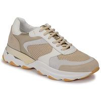 Shoes Women Low top trainers Lumberjack SWAY Beige / White