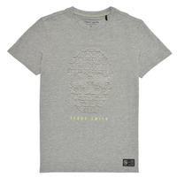 Clothing Boy Short-sleeved t-shirts Teddy Smith T-SKULL Grey