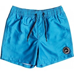 Clothing Children Trunks / Swim shorts Quiksilver EVERYDAY 13