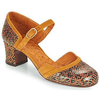 Shoes Women Heels Chie Mihara TROMPETA Brown
