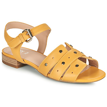 Shoes Women Sandals Geox D WISTREY SANDALO C Yellow