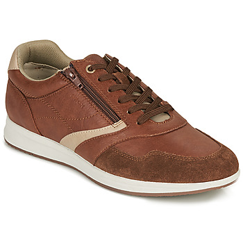 Shoes Men Low top trainers Geox U AVERY B Brown