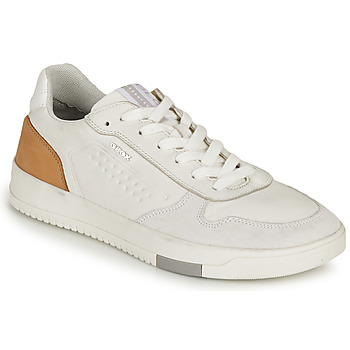 Shoes Men Low top trainers Geox U SEGNALE B White / Cognac